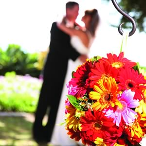 http://content.contentthatworks.com/images_articles/2008/bridal/bridal_20080925_gogreen_banner.jpg