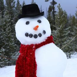 home_20080218_snowmen_banner.jpg